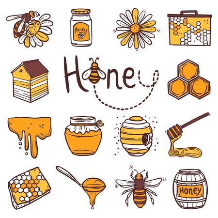 jars: Honey hand drawn decorative icons set with beehive wax cell flying bee isolated vector illustration