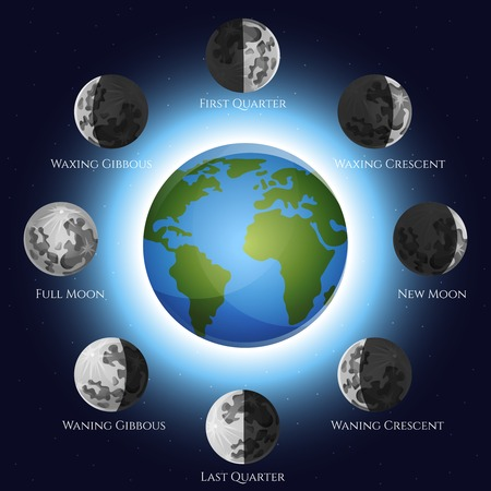 lunar phases: Moon phases lunar cycle shadow and earth globe vector illustration