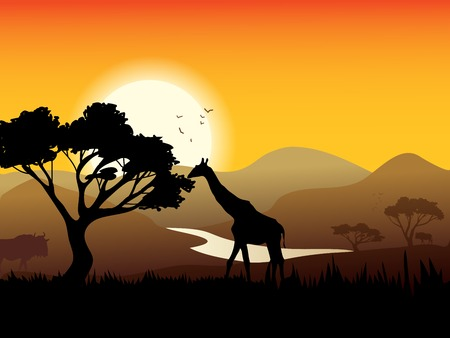 Sunset landscape vector: African landscape poster with acacia tree giraffe and sunset on background vector illustration