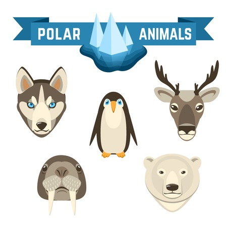 Polar animals decorative icons set with pinguin deer walrus white bear isolated vector illustration Illustration