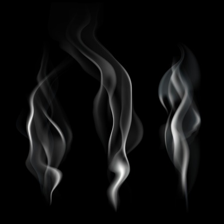 Smooth realistic smoke flowing wave on dark background vector illustration Vector