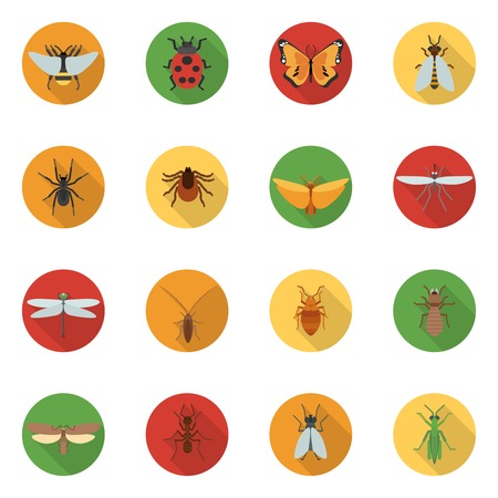 dragonfly wings: Insects icons flat set with dragonfly beetle woodlouse locust isolated vector illustration