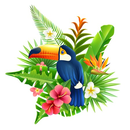 fronds: Tropical flowers and plant fronds set with toucan bird vector illustration