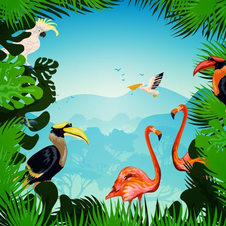 rainforest: Tropical forest background with exotic plants and wild birds vector illustration