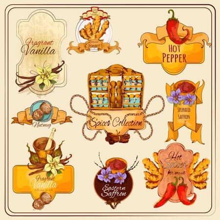 condimentos: Cocinar las especias etiquetas conjunto vendimia con condimentos alimenticios dibujado a mano ilustraci�n vectorial aislado Vectores