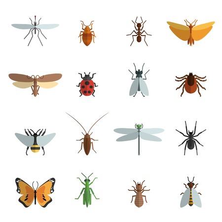 volar: Icono de insectos conjunto plana con la araña saltamontes mosquito hormiga ilustración vectorial aislado