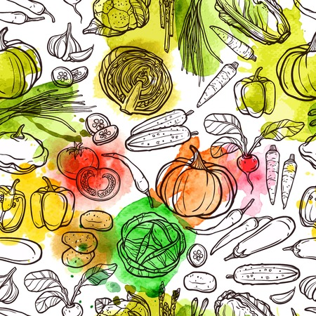 fruits and vegetables: Watercolor vegetable pattern with sketch radish pepper eggplant tomato vector illustration