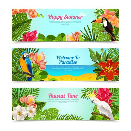 bird of paradise: Carteles horizontales Tiempo feliz de vacaciones hawaii islas verano establecido con plantas tropicales flores abstracto aislado ilustración vectorial