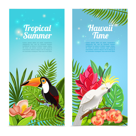 hawaii: Tropical hawaii islands summer vacation 2 vertical banners set with exotic parrots birds abstract isolated vector illustration Illustration