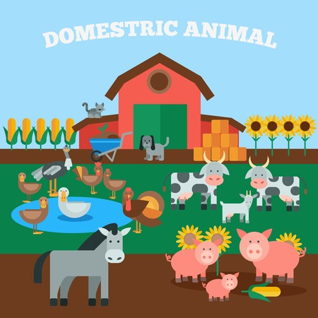 horse meat: Farm livestock concept with flat domestic animals icons set vector illustration