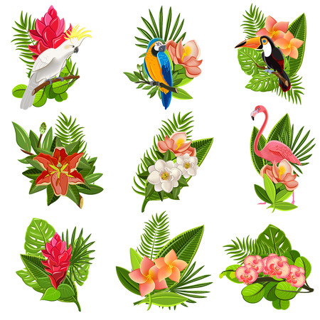 Exotic tropical flowers and birds icons collection with beautiful opulent green foliage arrangements abstract isolated vector illustration