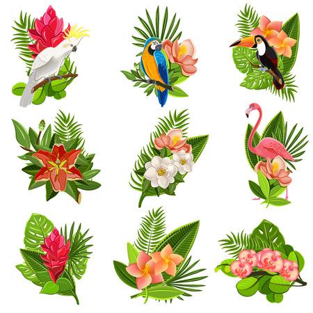 Exotische tropische bloemen en vogels iconen collectie met prachtige weelderige groene loof regelingen abstract geïsoleerde vector illustratie