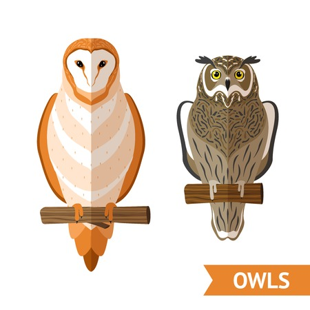 Two sitting owls front view flat decorative emblems set isolated vector illustration
