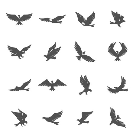 hawk: Different eagle birds spreding their wings and flying icons set isolated vector illustration