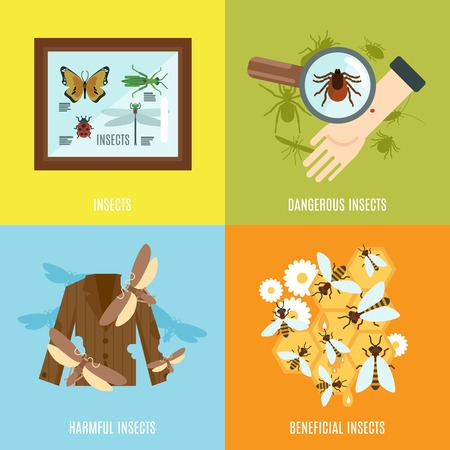 beneficial: Insects design concept set with dangerous harmful and beneficial creatures flat icons isolated vector illustration