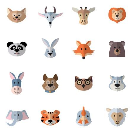 oso panda: Animales caracteres plana establecen con las cabezas de conejo zorro burro aislado ilustración vectorial