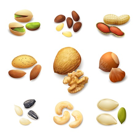 sunflower seeds: Nuts realistic set with pistachio almond walnut hazelnut isolated vector illustration