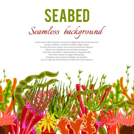 seabed: Seabed background with corals and seaweed seamless border vector illustration