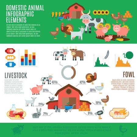국내 동물 가축 요소 및 차트 벡터 일러스트 레이 션 설정 infographics입니다
