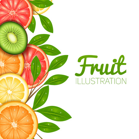 orange cut: Summer fruit  poster with cut lemon orange grapefruit and kiwi vector illustration Illustration