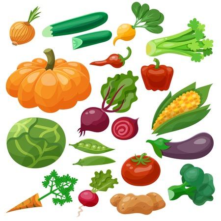 verduras verdes: Verduras iconos conjunto con rábano repollo coliflor maíz aislado ilustración vectorial Vectores
