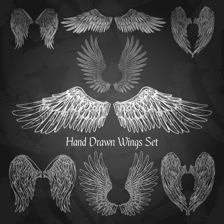 devil angel: Hand drawn wings set on chalk board isolated vector illustration