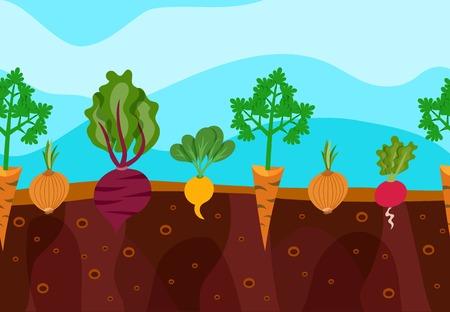 野菜装飾アイコンを設定する庭の土のベクトル図に成長  イラスト・ベクター素材