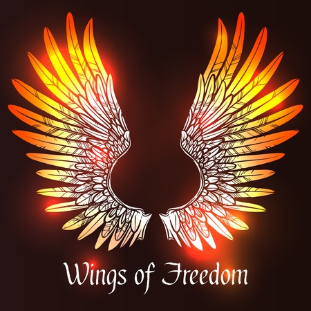 angel white: Sketch angel or bird wings on dark background with wings of freedom text vector illustration