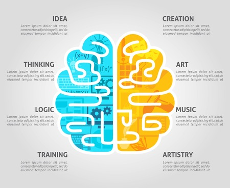 Brain function concept with left intellectual and right emotional hemispheres flat vector illustration
