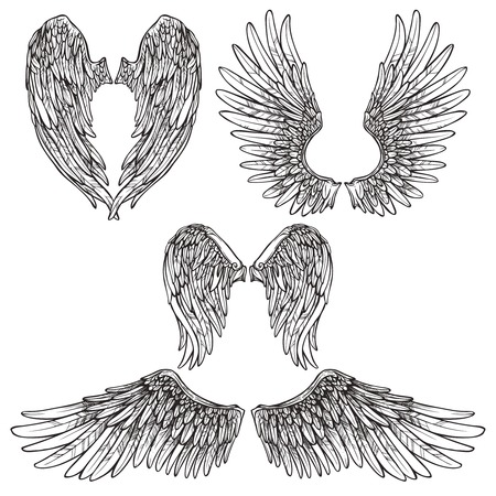 wings icon: Angel or bird wings abstract sketch set isolated vector illustration