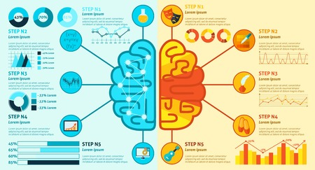 the right: Left and right brain hemisphere functions infographics set with charts vector illustration