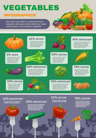 aubergine: Vegetables infographic set with pumpkin cabbage beetroot and aubergine flat vector illustration