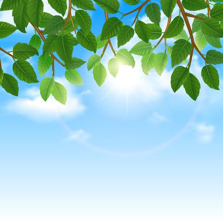 Mundo de Eco de hojas verdes naturaleza amigable estilo de vida y cartel frontera cielo de fondo imprimir resumen ilustración vectorial Foto de archivo - 42622868