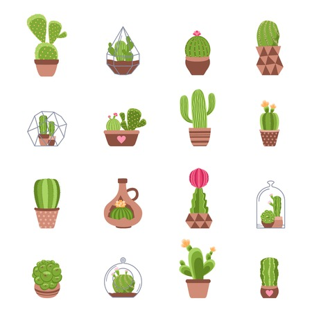spiny: Different types of cactus with flowers icons set isolated vector illustration