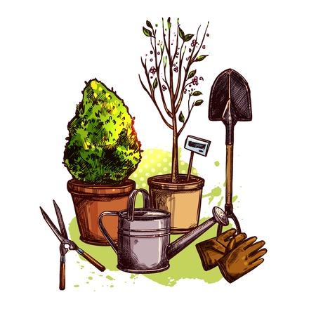 seedling: Garden tools set with sketch plants in pots and seedling equipment vector illustration Illustration