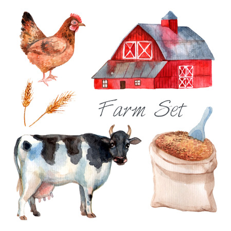 farms: Watercolor concept farm set with cow hen and grain isolated vector illustration