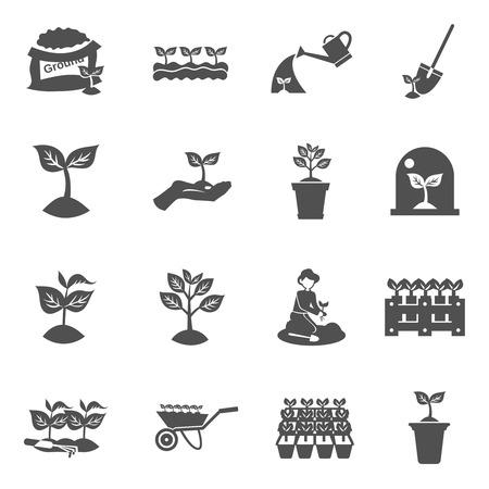 Plant zaailing water en graven apparatuur zwarte vlakke pictogrammen set geïsoleerd vectorillustratie