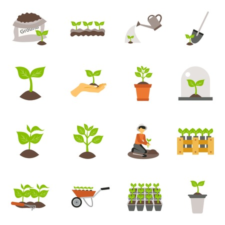 sowing: Flowers and plants seedling process flat icons set isolated vector illustration