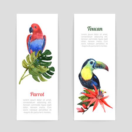 animales del bosque: Banderas verticales de vacaciones selva tropical establecer con el loro ex�tico y acuarela p�jaro tuc�n abstracto aislado ilustraci�n vectorial