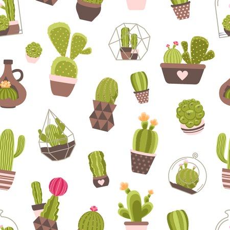 patrones de flores: Hogar y Jardín de Cactus plantas con flores patrón transparente ilustración vectorial