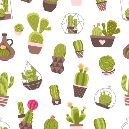 cacti: Home and garden cactus plants with flowers seamless pattern vector illustration