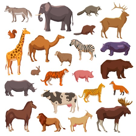 giraffe cartoon: Big wild domestic and farm animals decorative icons set isolated vector illustration