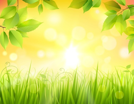 tree canopy: Sunrise in forest background with green tree leaves frame and sun beams in the middle vector illustration Illustration