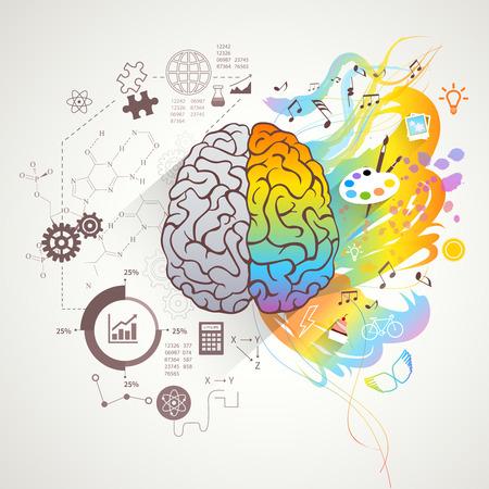 cerebro blanco y negro: Concepto de cerebro izquierdo y derecho con los colores de la música y la ciencia ilustración vectorial plana Vectores