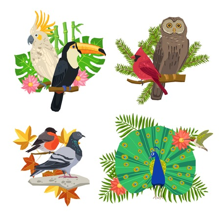 tropical tree: Tropical and forest birds on tree branches with flowers isolated vector illustration