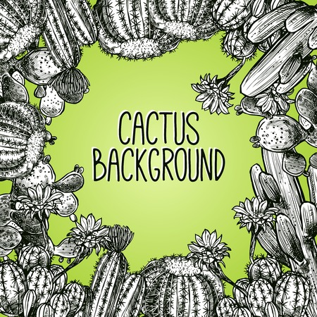 Black and white sketch cactus frame on green background vector illustration