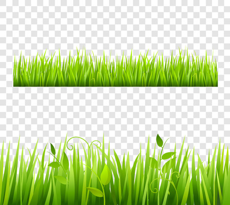 tileable: Green and bright grass border tileable transparent with plants flat isolated  vector illustration