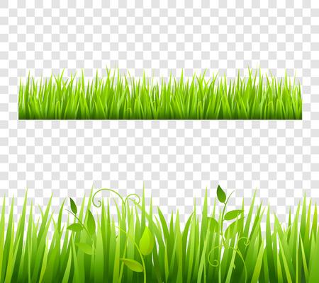 plante: Vert et lumineux herbe frontières carreler transparente avec des plantes plat isolé illustration vectorielle