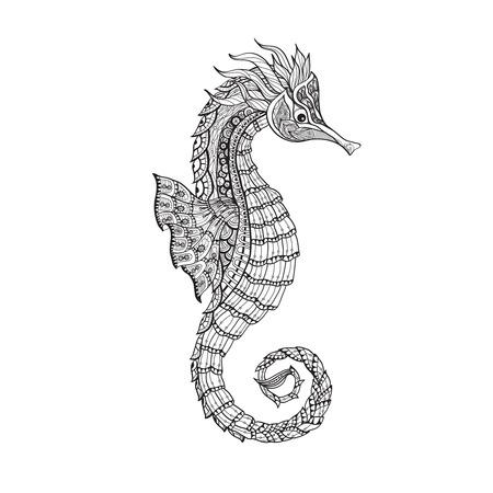 caballo de mar: Bosquejo del doodle de Vida de mar acuario marino de peces caballito de mar elemento decorativo línea negro resumen ilustración vectorial