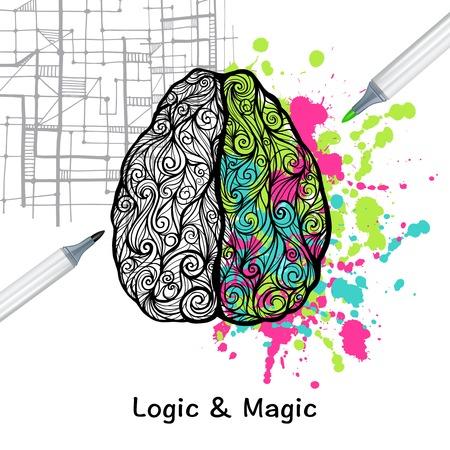mente humana: Dibujado a mano cerebro humano con la izquierda y la derecha hemisferios lógica creativa ilustración vectorial